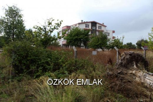 Altınova'da 4 Kat İmarlı Satılık Arsa