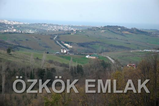 Gacık'ta Maviyle Yeşili Buluşturan Satılık Tarla Fırsatı
