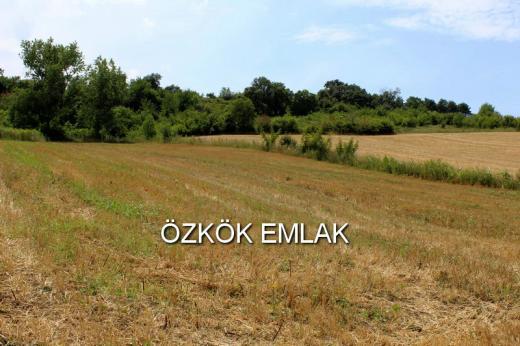 Gacık'ta Satılık Tarla