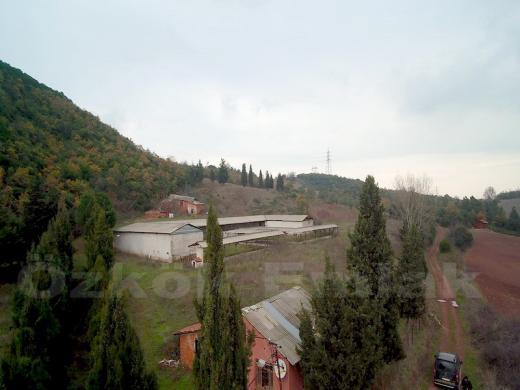 Kabaklı Köyü'nde Satılık Çiftlik