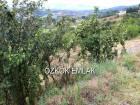 Karamürsel İnebeyli Köyünde Satılık Hazır Çiftlik