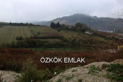 Kirazlı Köyünde Satılık Sanayi İmarlı Arsa