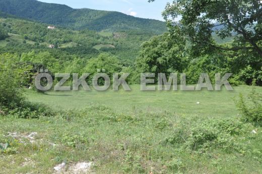 Kurtköy'de Satılık Tarım Arazisi