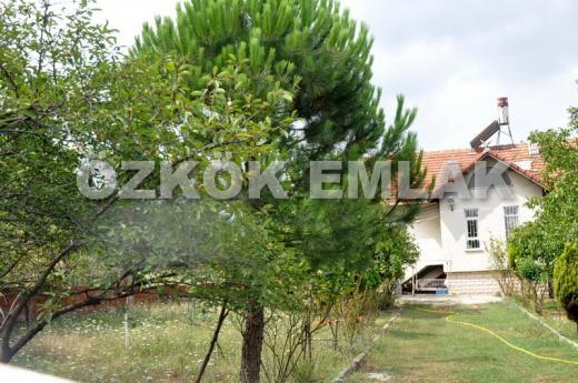 Safran'da Satılık Çiftlik Evi (Villa)