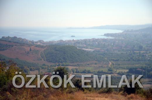 Şenköy'de Eşsiz Yatırım Fırsatı